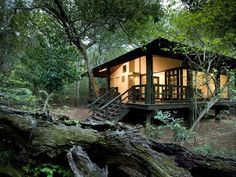 This cosy forest lodge makes for the perfect place to unwind after a day of exploring.