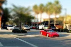 Ferrari Enzo in Sarasota