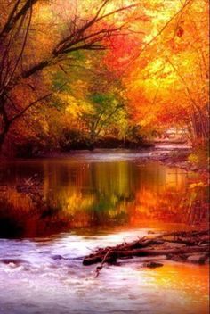 Bela paisagem...