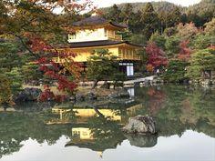 Temple du Pavillon d'or (Kinkaku-ji) (Kyoto) - TripAdvisor Kyoto, Temples, Trip Advisor, Attraction, Deck Gazebo, Temple