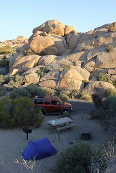 Joshua Tree National Park: Jumbo Rocks Campground - Campsite