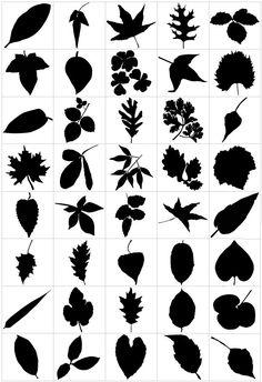http://cdn.tutsplus.com/vector/uploads/legacy/articles/2012/article-free-vector-trees/leaf-3.jpg