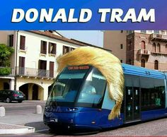 Donald Tram