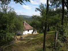 In Serbia, Donji Taor photo by Miodrag Trifunovic