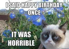 i said happy birthday once it was horrible