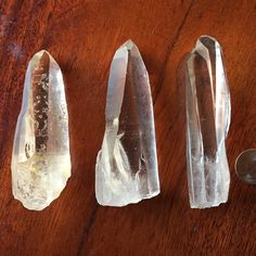 A little recap of the Lemurians featured today. This is a side by side shot for size comparison.  Check out many of our other Lemurians listed on our site.  TheCrystalGuardians.com #lemurian #lemurianquartz #lemurianseed