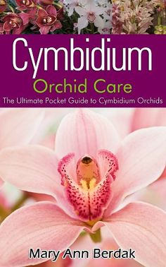 Cymbidium Orchid Care: The Ultimate Pocket Guide to Cymbidium Orchids by OrchidCareZone.com