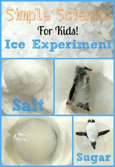 Science- Ice Experiment Simple science ice experiment for the kids. Perfect for the winter time.Simple science ice experiment for the kids. Perfect for the winter time. Kid Science, Kindergarten Science, Science Classroom, Science Fair, Teaching Science, Summer Science, Physical Science, Science Education, Science Experiments Kids