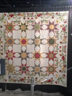 Feathered Star Quilt from Houston Quilt show