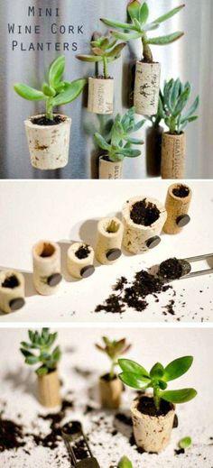 3-mini-wine-cork-planters-woohome