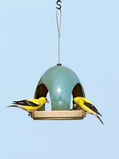 Beautifully glazed ceramic bird feeder and waterer will provide many years of enjoyment. Set includes Fly-Through Feeder and matching Waterer. Ceramic Houses, Ceramic Birds, Ceramic Pottery, Ceramic Art, Clay Birds, Bird House Feeder, Diy Bird Feeder, Pottery Classes, Clay Design