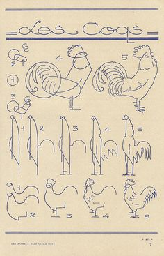 drawing a rooster or chicken ~ if you were so inclined