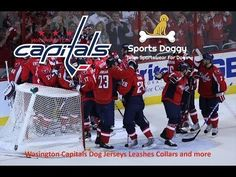 1ee601390 NHL ·  Capitals  washingtoncapitals gear for dogs. Because  dogs love  hockey too.