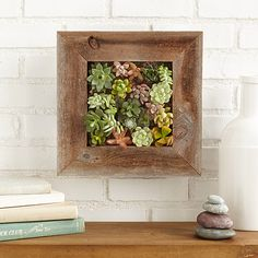 Look what I found at UncommonGoods: succulent living wall planter kit... for $110 #uncommongoods