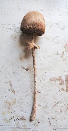 Mr Finch--fabric mushroom sculpture