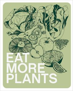 eat more plants great tips for going vegan with links to other vegan sites. as soon as the baby comes i will do this! High Protein Vegetarian Recipes, Raw Food Recipes, Healthy Recipes, Vegan Meals, Healthy Foods, Plant Based Diet, Going Vegan, Going Vegetarian, Get Healthy