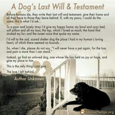 My friend Caroline Read recited this to me after Henri had passed. This will touch your heart.
