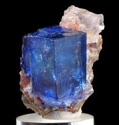 "mineralists: "" Rare blue Halite on Sylvite from Intrepid Potash East Mine, New Mexico "" Rare Gemstones, Minerals And Gemstones, Rocks And Minerals, Natural Crystals, Stones And Crystals, Natural Gemstones, Gem Stones, Cristal Art, Mineral Stone"
