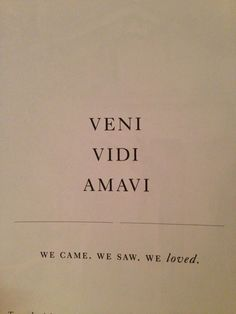 I came I saw I loved Latin motto quote