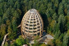Tree Top Walk is located in the Bavarian Forest in Neuschonau, Germany;  this fabulous nature trail culminates with an amazing 144 feet tall observation tower – the longest tree top walk in the world;  it is even wheelchair accessible   ...notice the people on the top of the structure...