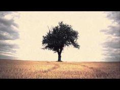 The Devil's Tears - Angus & Julia Stone (LYRICS) HD