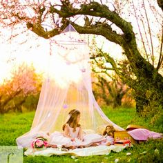 Tea party in the Orchard How fun would this be for a little girl's fairy party! Mosquito nets in trees. Photography stylingHow fun would this be for a little girl's fairy party! Mosquito nets in trees. Mini Sessions, Photo Sessions, Photography Props, Children Photography, Girl Photography, Photography Ideas Kids, Tea Party Photography, Themed Photography, Spring Photography
