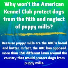 The AKC opposes animal welfare