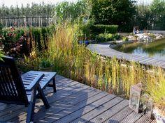 Fabulous Holzdeck am Schwimmteich mit Liegestuhl LiegestuhlSchwimmteichGarten Naturschwimmb derTraumgartenSchwimmb derGarden