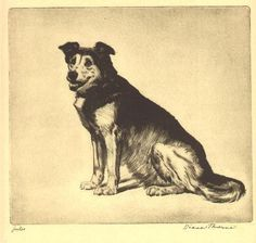 """JULES"" by Diana Thorne    This listing is for an original antique print from the work Real Tales of Real Dogs by Albert Payson Terhune.     Diana Thorne was renowned for her incredible drawings of dogs. This print is in good condition considering it is over 75 years old with no foxing or tears.    Please note - THIS THE ORIGINAL PRINT - NOT A COPY OR REPLICA    Reverse is blank, print is not matted, the actual print is in the photo, measuring 8"" x 7 1/4"" printed area ready to frame."