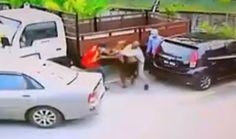 Lelaki India diculik empat orang di Kepong - http://malaysianreview.com/147612/lelaki-india-diculik-empat-orang-di-kepong/