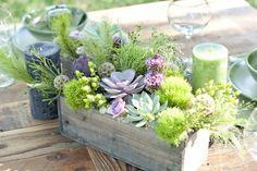 Courtney-Lee-Photography-Colorado-Mosiac-Events-Eco-Beautiful-Weddings-Green-Weddings-Handmade-Eco-Friendly-Weddings