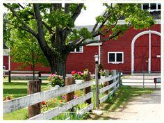 Wellesley Farm
