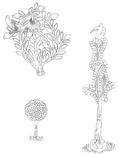Cahide Keskiner - Minyatür Sanatında Doğa Çizim ve Boyama Teknikleri Selçuklu ağaç ve bitkileri
