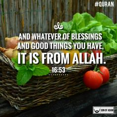 There's blessing in 3 things: the morning meal, bread and in soup. 'Foods of the Prophet':