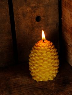 Handmade Pure Beeswax Large Pine Cone Candle perfect for a fall or winter wedding or as a wedding gift. Candle Art, Candle Magic, Candle Lanterns, Bulk Candles, Beeswax Candles, Diy Candles, Christmas 24, Christmas Candles, Navidad