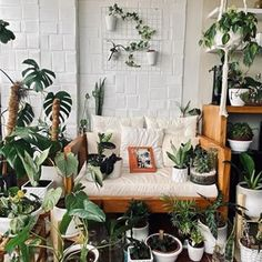 Plant Tribe Book (@planttribebook) • Instagram photos and videos Living Room Inspiration, Interior Inspiration, Jungle Bedroom, Bedroom Apartment, Apartment Therapy, Living Room Interior, Living Rooms, Art Mural, Urban