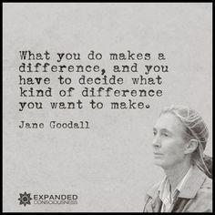 You decide . . .