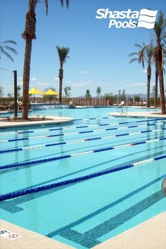 18 Shasta Pools Commercial Projects Ideas Shasta Pool Builders Commercial