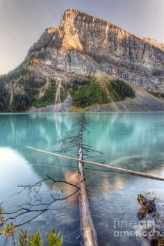 ✯ Lake Louise - Banff, Canada Going to be here in 5 days! Places Around The World, Oh The Places You'll Go, Places To Visit, Around The Worlds, Rocky Mountains, Cool Landscapes, Beautiful Landscapes, British Columbia, Beautiful World