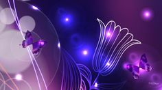 Butterfly Pictures, Thought Of The Day, Hd Desktop, Say Hello, High Definition, Hd Wallpaper, Lights, Floral Backgrounds, Beautiful