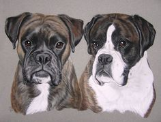 Two dogs by mo62 on deviantART