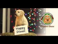 This #Diwali let us take a pledge to celebrate this festive in a different way and #SayNoToCrackers.