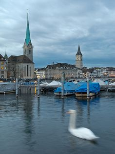 ZURICH by Nikonisti on Flickr.