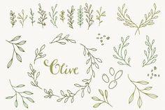 Olive Branch Clip Art & vectors By The Pen & Brush
