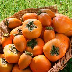 El #Caqui es una fruta típicamente otoñal y además de ser una de las más dulces, es rica tanto en vitaminas como en minerales.