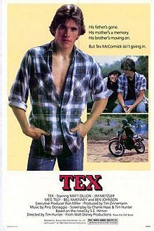 Tex is a 1982 drama film directed by Tim Hunter (his first film as a director) and written by Charles S. Haas, based on the novel of the same name by S. E. Hinton. Matt Dillon and Jim Metzler play brothers who struggle after their mother dies and their father walks out on them.