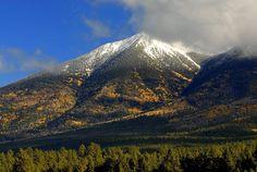 San Francisco Peaks, Flagstaff, Arizona  by Marcus W. Reinkensmeyer