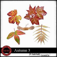 Autumn 3 CU : Scrap and Tubes Store, Digital Scrapbooking Supplies