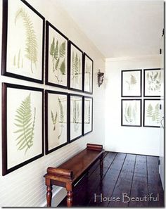 Comfortable Home Upstairs Hallway Fern prints and a Regency bench lend presence to a small upstairs hall.Upstairs Hallway Fern prints and a Regency bench lend presence to a small upstairs hall. Upstairs Hallway, Swedish House, Interior Decorating, Interior Design, Decorating Ideas, Decor Ideas, Hamptons House, Ferns, Decoration