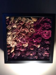 Dried roses + Shadow box <3 doing this for the roses jack gave me finally found something I like <3